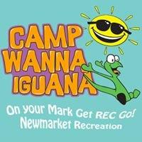 Camp Wanna Iguana