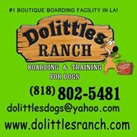 Dolittles Ranch Dog Boarding