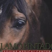 Alamo Pintado Equine Medical Center