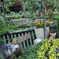 Black Creek Greenhouses
