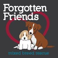 Forgotten Friends Mixed Breed Rescue