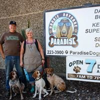 Paradise Doggie Daycare