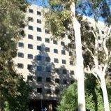 UCLA Economics Counselors