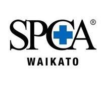 Waikato SPCA