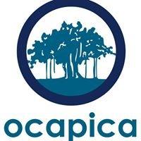 Ocapica (Orange County Asian and Pacific Islander Community Alliance)
