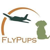 FlyPups