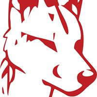 Dingo Dog Brewing Company