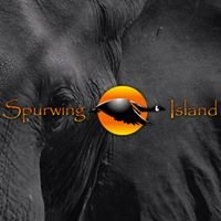 Spurwing Island