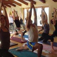 Pj's Yoga Shala