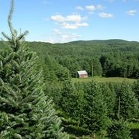 Meadow Ridge Farm - Vermont Christmas Trees