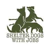 Shelter Dogs with Jobs