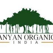 Bnyan Organic Foods