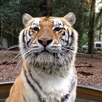 E.A.R.S. Endangered Animal Rescue Sanctuary of Central Florida