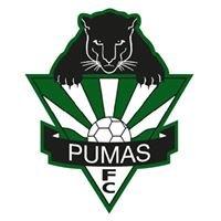 Hills Pumas FC