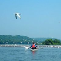 Konkan Explorers Goa : Cruise, Kayaking, Sailing.