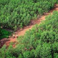 Dong Nai Biosphere Reserve