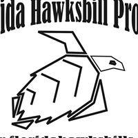 Florida Hawksbill Project