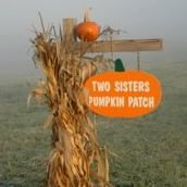 Two Sisters Pumpkin Patch