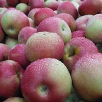 Markillie Orchard