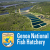 Genoa National Fish Hatchery and Great River Road Interpretive Center