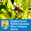 Columbia Fish and Wildlife Conservation Office / Ecological Services