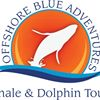 Offshore Blue Adventures