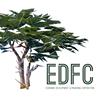Economic Development & Financing Corporation