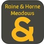 Raine & Horne Meadows