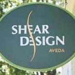 Shear Design