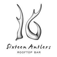 Sixteen Antlers