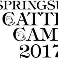 Springsure Cattle Camp