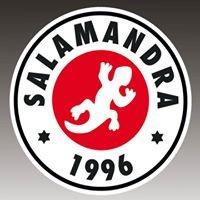 Salamandra Sala2