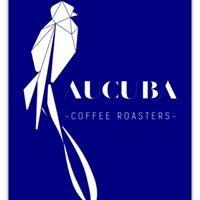Aucuba Coffee Roasters