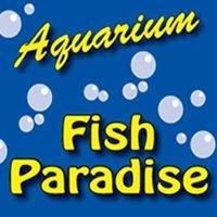 Aquarium Fish Paradise