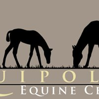 Quipolly Equine Centre