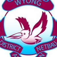 Wyong District Netball Association