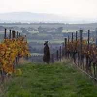 Barwon Ridge Wines