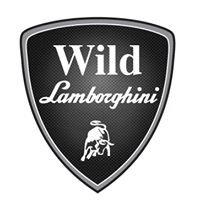 WILD LAMBO