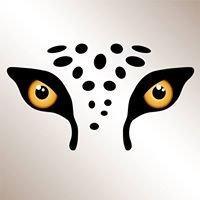 Serengeti Print Group - Copylam Services