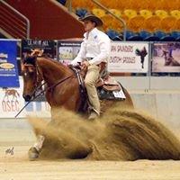 Flex Horse Training Pty Ltd