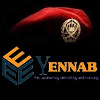 Ennab for Accounting Consulting and Training