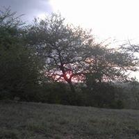 AfrikaAfrika