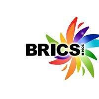 International BRICS Young Leaders Forum 2014 - MGIMO