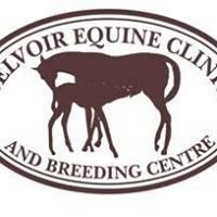 Belvoir Equine Clinic