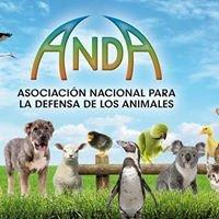 ANDA (Asociación Nacional para la Defensa de los Animales)
