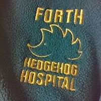 Forth Hedgehog Hospital