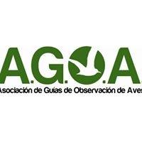 Asociación de Guías de Observación de Aves de Argentina