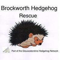 Brockworth Hedgehog Rescue