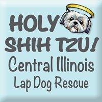 HOLY SHIH TZU  Rescue & Adoption