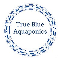 True Blue Aquaponics